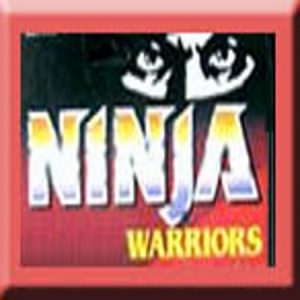 Ninja Warriors Enemies of evil
